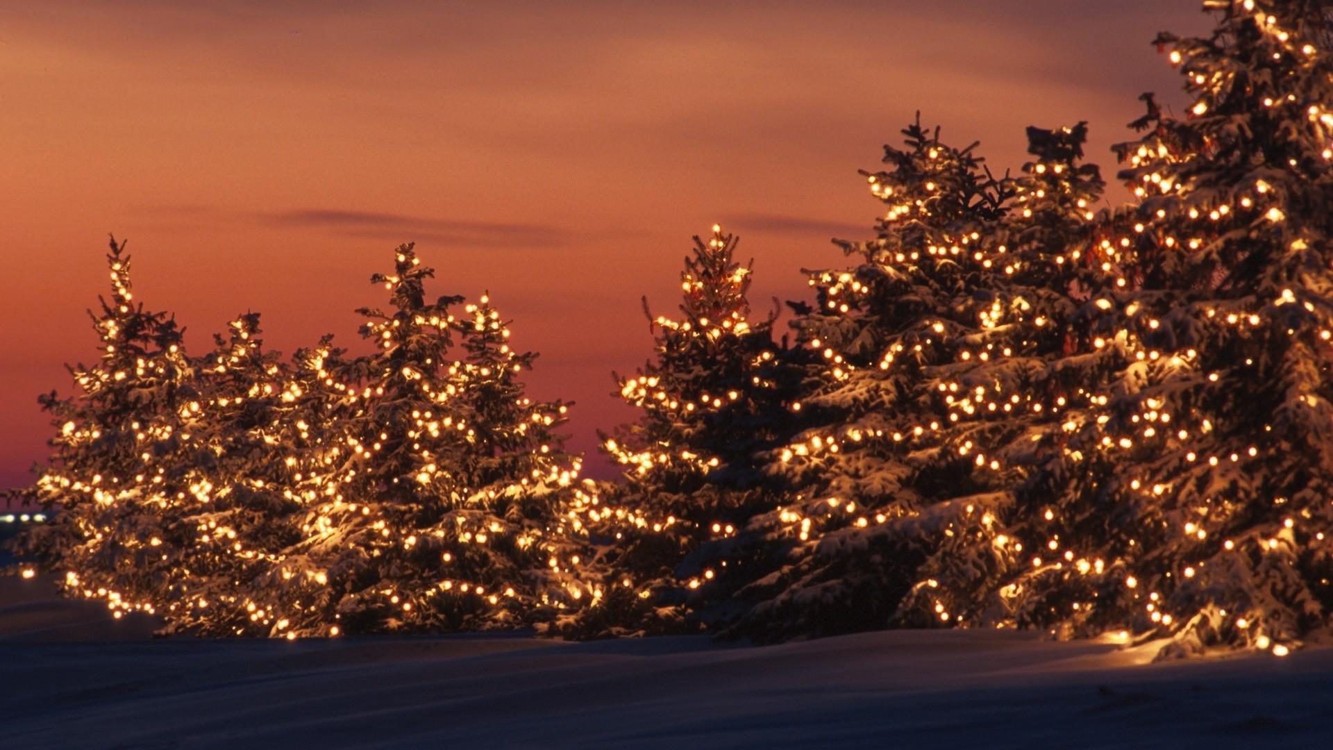 Kalėdinės išvykos moksleiviams
